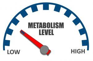 Замедление метаболизма