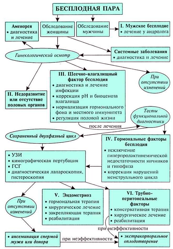 врачебная схема диагностики и лечения бесплодия у мужчин и женщин