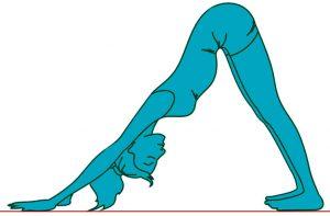 Концентрация во время йоги