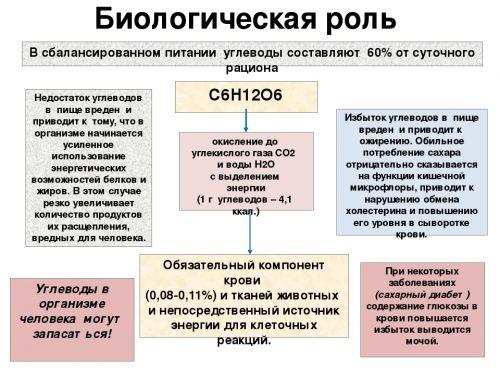 Биологическая роль углеводов