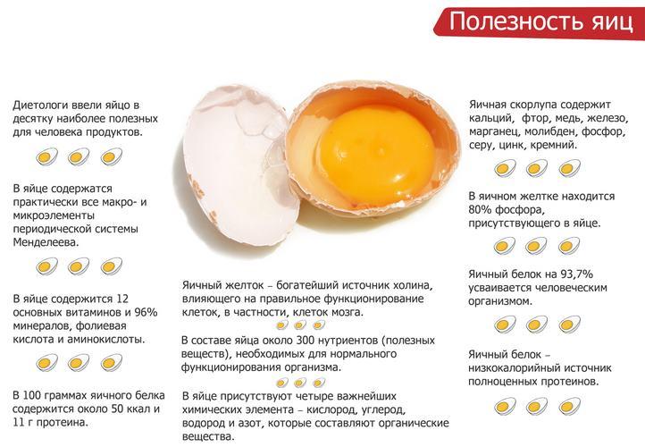 Польза яиц
