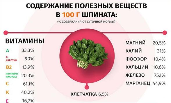 полезных веществ в шпинате