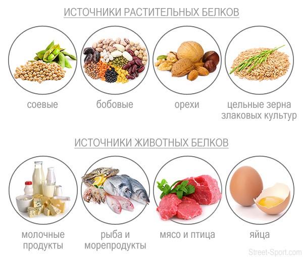 Растительные и животные белки