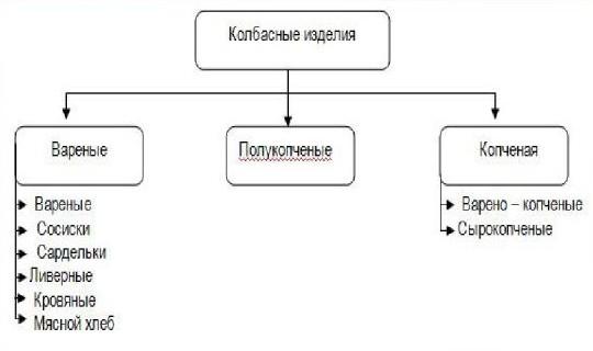 Классификация колбас