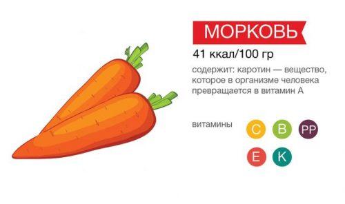 Полезный состав и калорийность моркови