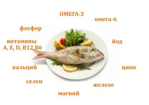 Полезный состав рыбы